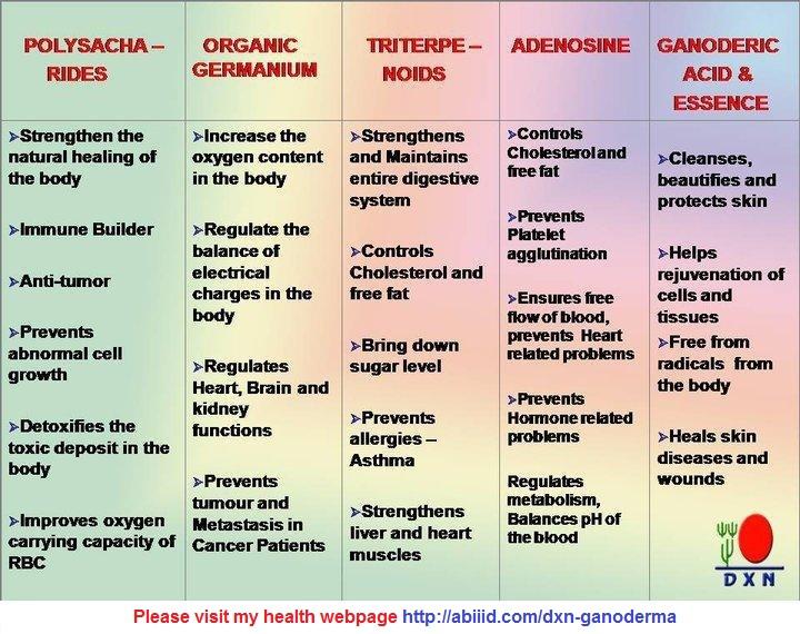 Poysaccharides-Organic Germanium-Triterpenoids-Sdenosine-Ganoderic Acid & Essence